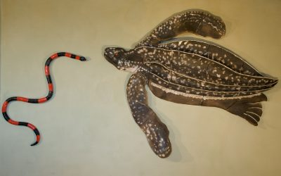 Tortue Luth et Serpent – Fresque Haut relief
