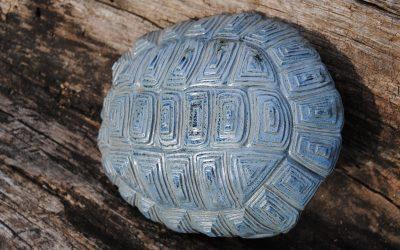 Carapace Tortue Bleue – Sculpture Céramique